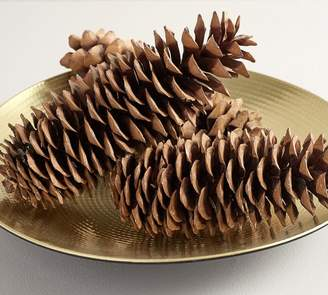 Pottery Barn Oversized Pinecone Decorative Accents