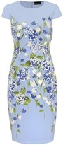Phase Eight Corrina Placement Floral Dress