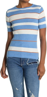Current Air Striped Short Sleeve Sweater Top