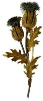 Buccellati Breathtaking Mario Pin Thistle Brooch Italy 18k 750 Gold