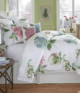 Southern Living In Bloom Collection Flora Watercolor Floral Comforter Mini Set
