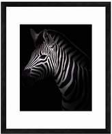 PTM Images Zebra Wall Art