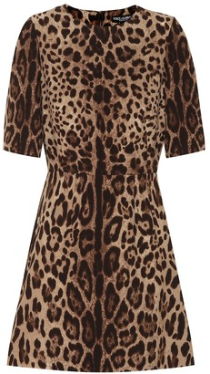 Dolce & Gabbana Leopard-print wool-crApe dress