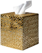 Mike and Ally Mike & Ally Jamila Golden Glass Tissue Box Cover