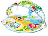 Skip Hop Infant 'Amazing Arch' Activity Gym