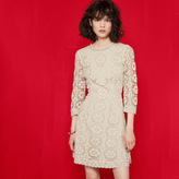 Maje Short lace guipure dress