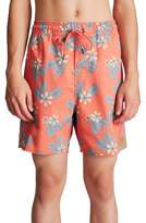 Brixton Havana Swim Trunks