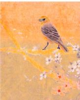 Bird in the Orange - Print