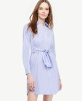Ann Taylor Petite Striped Cinch-Waist Poplin Shirtdress