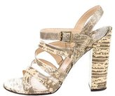Paul Andrew Lizard Crossover Sandals