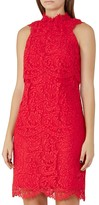 Reiss Sophia Lace Dress