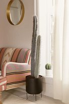 Urban Outfitters Large Faux Cactus Decor