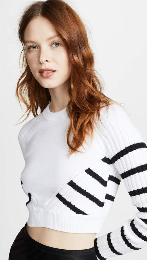 Alexander Wang Multi Direction Striped Cropped Sweater