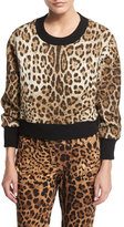 Dolce & Gabbana Leopard-Print Top with Knit Collar & Cuffs