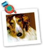 3dRose LLC qs_522_1 Dogs Borzoi - Borzoi - Quilt Squares