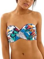 Cleo by Panache Isla Bandeau Bikini Top