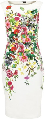 Phase Eight Cilla Meadow Print Dress