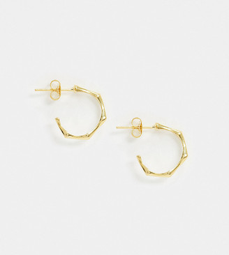 Kingsley Ryan sterling silver gold plated hoop earrings in faux bamboo design