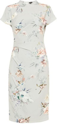 Phase Eight Ashley Floral Print Dress