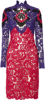 Erdem Orlanda guipure lace dress
