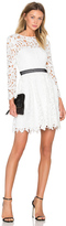 Cynthia Rowley Wild Flower Fit & Flare Dress