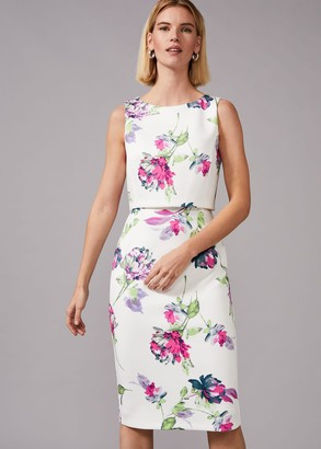 Phase Eight Tabatha Floral Scuba Dress