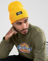 Dickies Yonkers Beanie In Gold Orange
