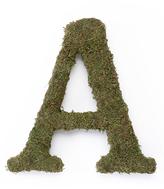 Lillian Rose Large Moss Monogram Letter or Ampersand