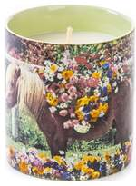 Seletti Toiletpaper Candle - Pony