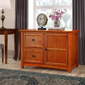 Seger 2 Drawer Lateral File with Door Darby Home Co