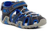 Geox Kraze Strap Sandal (Little Kid)