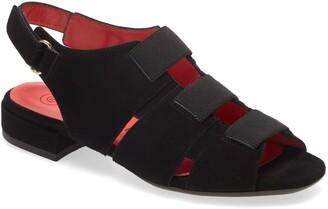 Pas De Rouge Fleur Multi Strap Sandal