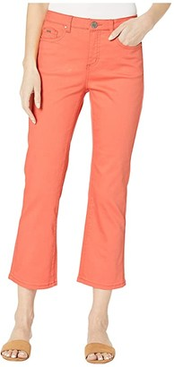 FDJ French Dressing Jeans Sunset Hues Denim Olivia Flare Crop in Cantaloupe (Cantaloupe) Women's Jeans