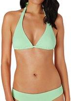 Swell Taylor Halter Bikini Top