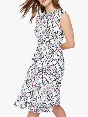 Damsel in a Dress Marin Animal Print Dress, Multi