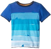 Hatley Ocean View Shark Graphic Tee Boy's T Shirt