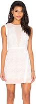 Greylin Lana Two Tone Lace Dress