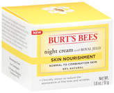 Burt's Bees Skin Nourishment Night Cream