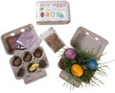 Eco-kids eggs coloring & grass growing kit