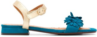 Chie Mihara Talico floral-applique suede sandals