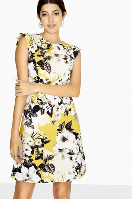 Paper Dolls Avoca Shift Dress In Floral Print