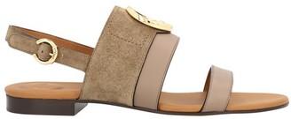 Chloé C sandals