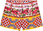 Dolce & Gabbana Majolica Print Cotton Shorts