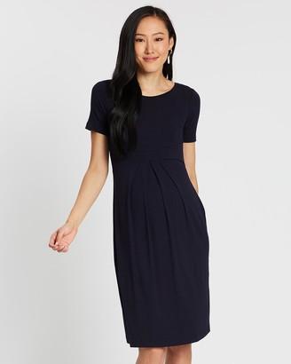 Isabella Oliver Catherine Maternity Dress