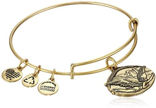 Alex and Ani Guardian of Freedom Expandable Wire Bangle Bracelet
