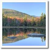 3dRose LLC ht_92307_3 Danita Delimont - New Hampshire - Lily Pond, White Mountain Forest, New Hampshire - US30 AJE0010 - Adam Jones - Iron on Heat Transfers - 10x10 Iron on Heat Transfer for White Material