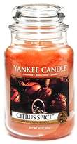 Yankee Candle Yankee Candles 22 oz Jar Candle CITRUS SPICE