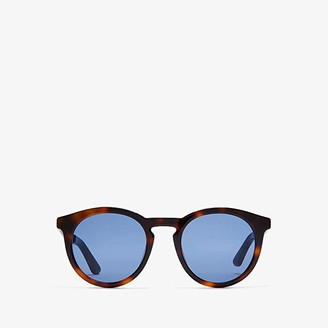 Jimmy Choo Albert/G/S (Havana) Fashion Sunglasses