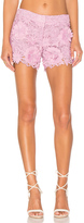 Milly Embroidered Short