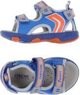 Geox Sandals - Item 11028356